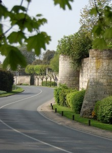 cropped-290_675_Remparts-Mirebeau.jpg